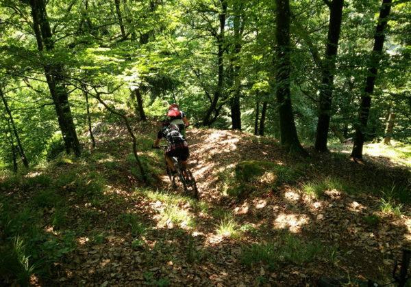 MTB-Tour im Donautal
