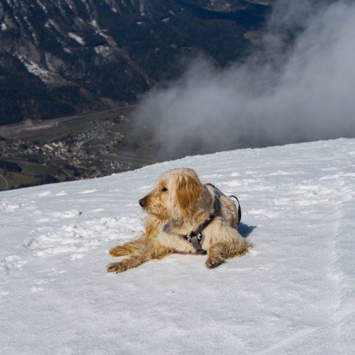 Skitour Gr. Pyhrgas - Hasenbergrinne